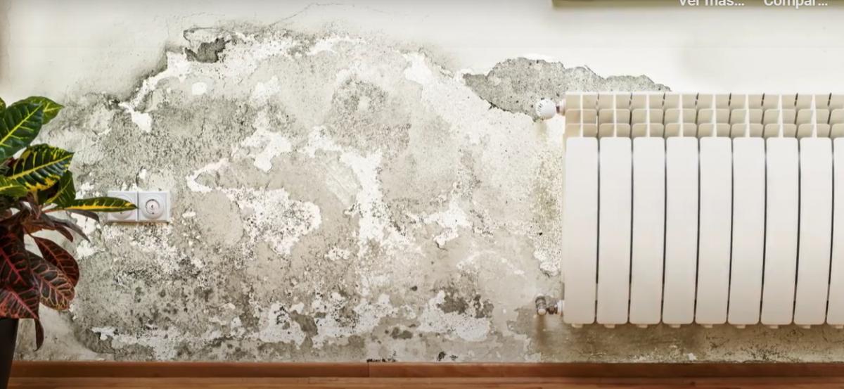 ¿Cuales son las soluciones a un problema de humedades en paredes o vivienda?