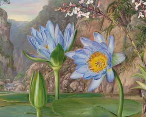 Ideas y cosas sobre las mejores pinturas de óleo 44