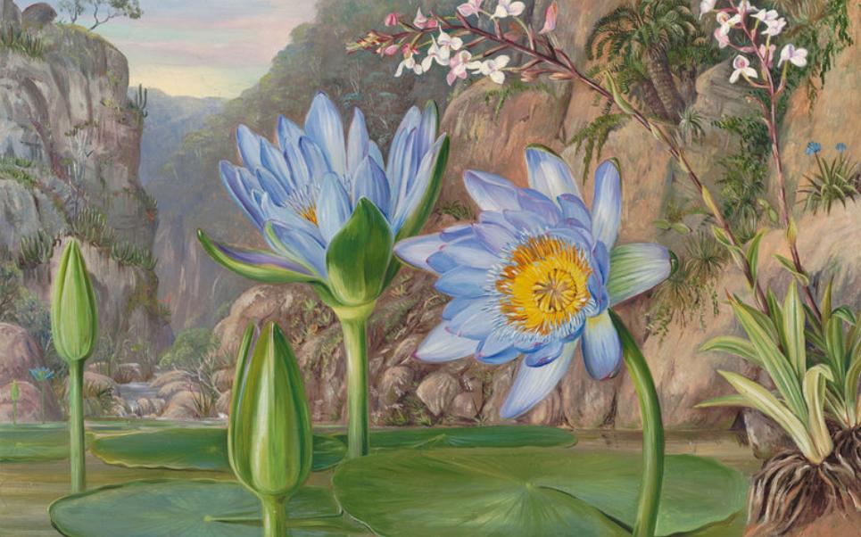 Ideas y cosas sobre las mejores pinturas de óleo 4