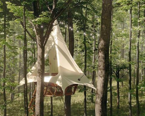 Las impactantescasas en los árboles de O2 Treehouse by Treewalkers 7