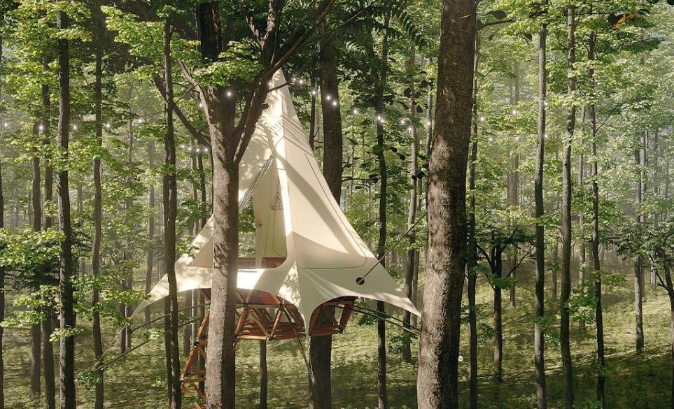 Las impactantescasas en los árboles de O2 Treehouse by Treewalkers 4