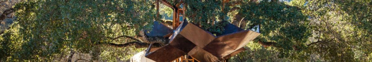 Las impactantescasas en los árboles de O2 Treehouse by Treewalkers 2