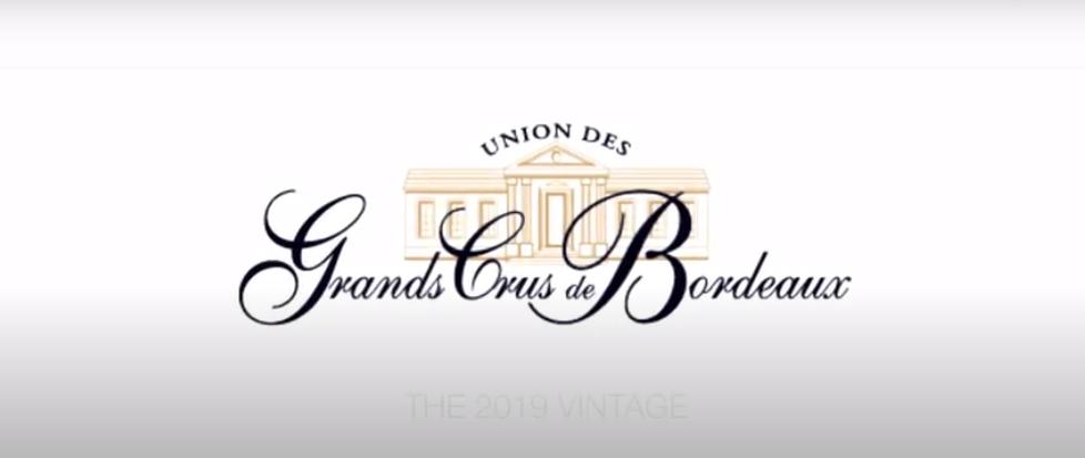 Buscando el mas caro vino del mundo de Burdeos: Château Lafleur 1