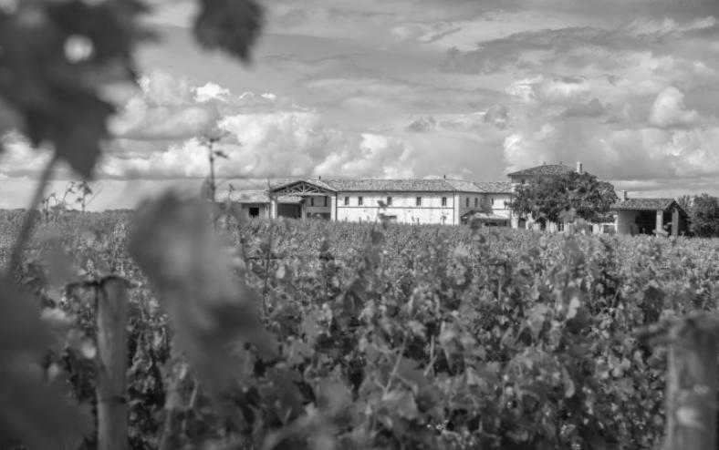 Buscando el mas caro vino del mundo de Burdeos: Château Lafleur 3
